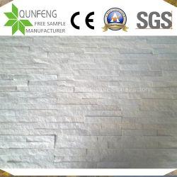 زخرفيّة جدار [كلدّينغ بنل] مرويت ينقسم وجه ثقافة حجارة