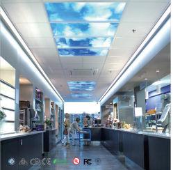 装飾または/Officeのホームにつくことのための引込められた青空LEDの照明灯