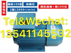 100 Internacional tipo polo núcleo de cobre puro de 2 (2800) de Inteligencia de motor eléctrico monofásico