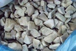 Замороженные Pleurotus Ostreatus/Устричный гриб