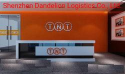 International Express serviço de transporte da China para a América do Sul (DHL/UPS/FedEx/TNT)