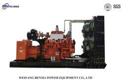 300kw / moteur de la série 375 kVA Benma le gaz naturel (GNC, de GNL) générateur fabriqués en Chine