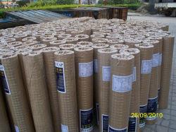 Le fil soudé en acier galvanisé de haute qualité mesh pour le bâtiment