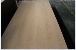Beech natural Fancy Plywood Panel 4.8mm-18mm Sale em México