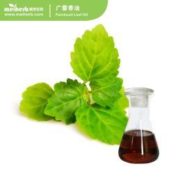 Óleo essencial melhor terapêutica preços Patchouli Natural deixa orgânicos de extração de Óleo de Patchouli