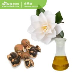 Venda a quente puro óleo de semente de Camellia cuidado da pele