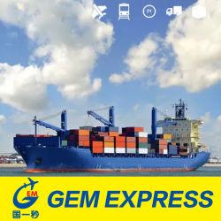 Высшее качество Китай экспортных перевозок, морские грузовые перевозки от компании Шэньчжэнь на Филиппинах