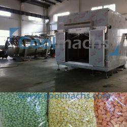 Arroz instantâneo/farinhas instantâneas Secador de congelamento de Vácuo/Lyophilizer alimentar