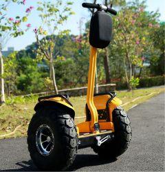 A6 전기 스쿠터 차 균형을 각자 균형을 잡는 뚱뚱한 타이어 발 균형 널