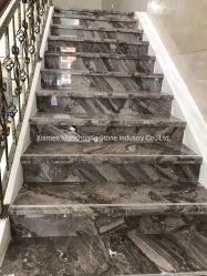 암갈색 자연적인 대리석 돌 마루 도와 및 층계