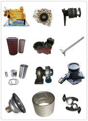 Wei Chai-dieselmotoren voor wielladers en graafmachines Pars met waterpomp en oliefilter