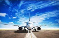 Международные воздушные грузовые перевозки доставка в Шэньчжэне в Колумбии Венесуэлы аргентинского службы доставки от двери до двери