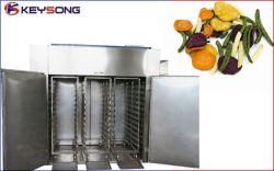 Китайский конкурентоспособной цене Производство сушеных овощей линии обработки
