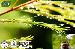 заводская цена основную часть чистого масла Чайное дерево