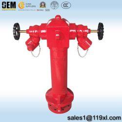 2方法BS750柱の屋外の消火栓