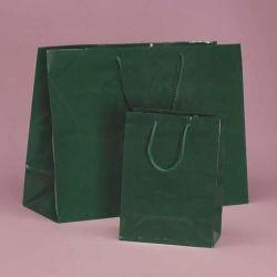 Qualität farbiger glattes Papiereurotote-Beutel für Kleidung-Förderung