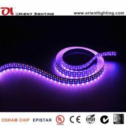 UL Ce 240LED/M Double ligne IP20 SMD2835 RGBA Strip Light LED souples