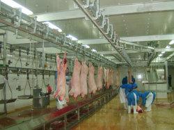 Suínos 100-500/Dia da linha de abateMáquina Defeathering abate de suínos Preço de Linha