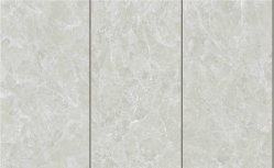 0,5% de absorción de agua 300x600mm rostro diferente Baldosa Porcelana (JM361008D)