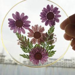 Tour personnalisé de haute qualité pressé fleur sèche de l'acrylique Coaster