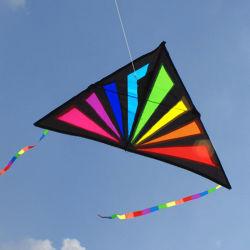 Настройка высокого качества Rainbow дельта-Ray воздушного змея в строку