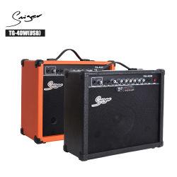 40W AMP Custom, Acústicos amplificadores para guitarra