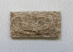 أصفر كوارتز موشRoom البلاط الحجر واجهة الحجر الحجري Mushroom الاستنساخ على الجدار