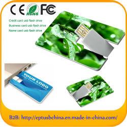 Venta caliente Personalizar Tarjeta de memoria USB Flash Drive de disco (CE002)
