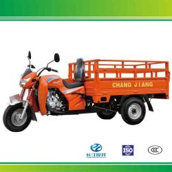 200cc 3 Wheel Motor Bikes con Open Body Widely Used in Cina