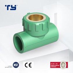 Raccordi per tubi in plastica a T verde per tubazioni professionali in PPR Ottone femmina Offerta di accoppiamento OEM