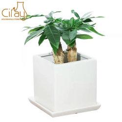 Weißes Quadrat-dekorative Hausgarten-Mattdekoration-keramischer Innenpflanzenpotentiometer