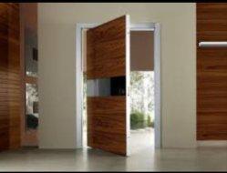 純木のドアデザイン、正面玄関のドア、ベニヤ部屋のドア