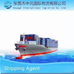 Voyage International Logistics Commercio di riesportazione di paesi terzi