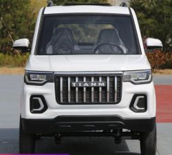 الطاقة الكهربائية السيارات للبيع المشي لمسافات طويلة السيارات تستخدم الطاقة الجديدة السيارة الكهربائية 5 مقاعد أفضل سعر للصين