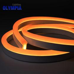 Striscia al neon flessibile di SMD5050 IP68 LED