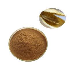 El extracto de semilla de mango africano 10: 1 20:1 Polvo