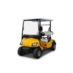 세륨 승인되는 새로운 형식 황색 2 고품질을%s 가진 4개의 6개의 8개의 시트 골프 카트