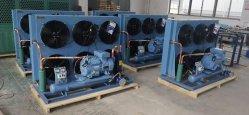 Refrigeração personalizada Industrial personalizada personalizada condensador arrefecido a ar/unidade de condensação de congelação com Compressor com Painel de controlo eléctrico
