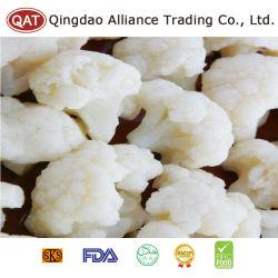 Großhandelspreis gefrorenes Gemüse Produktionslinie IQF gefrorenen Blumenkohl Reis
