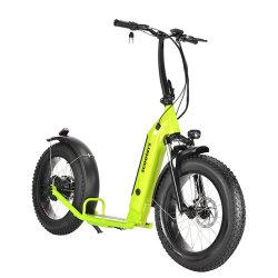 20인치 타이어 풀 서스펜션 배터리 탈착 가능한 킥E-스쿠터 스노우 시티 비치용 전동 스쿠터 렌트 500W E 스쿠터