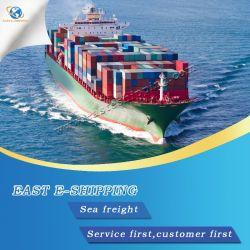 De Dienst van de logistiek van China aan het Verenigd Koninkrijk/Duitsland/Frankrijk/Nederland/België/Spanje