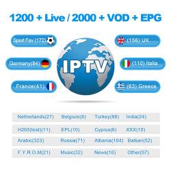 1/3/mois 6/12Eutv IPTV TV en direct de VSD d'abonnement pour les USA Canada UK arabe les chaînes sportives de l'UE 3 jours Essai gratuit du panneau de revendeur pour l'IPTV Smarters Mag254,