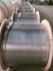 AISI 316 ステンレススチールコイルチューブ