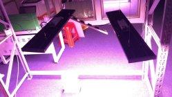 Veg/flor de luz LED de crecer 2020 ETL/Ce/FCC de alta potencia certificada
