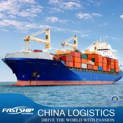 A China para a América do Norte/Sul para o transporte marítimo internacional de mercadorias de serviços de logística de Agente