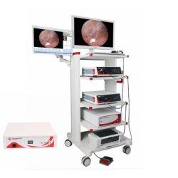 30graus 4x175mm Artroscópio com bainha, Punch Forcep em aço inoxidável rígida do artroscópio endoscópio opcional