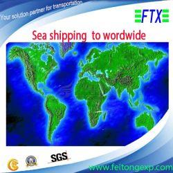 Storage libero Services, From Shenzhen a Worldwide Sea Shipping