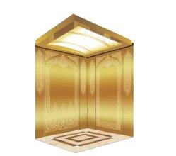 Lift van de Lift van de Lift van de Lift van de Passagier van de Bouwconstructie van Vvvf de Gouden Woon