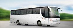 33+1+1シート11メートル電気都市バス