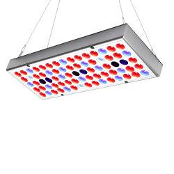 Xinjia新しいデザイン25W完全なスペクトルLEDは屋内植物成長のためのランプのパネルを育てる